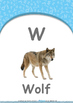 Animals - Sea Animals : Letter W : Wolf - Nursery (2 years old)