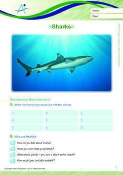 Animals - Sharks (I): Describing Sharks - Grade 5