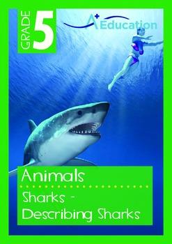 Animals - Sharks (I): Describing Sharks - Grade 5