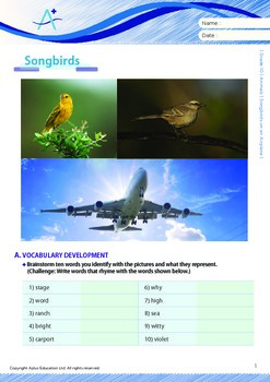 Animals - Songbirds on an Airplane - Grade 10