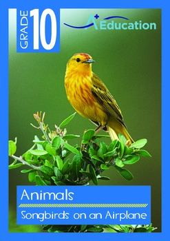 Animals - Songbirds on an Airplane - Grade 10