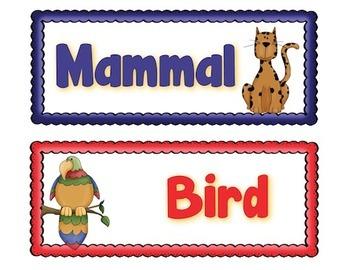 Animals Sorting Safari: Science & Literacy Big Kids
