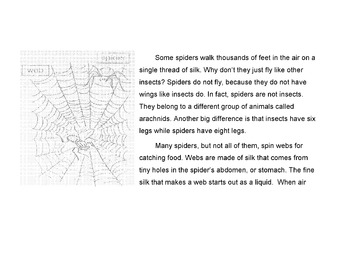 Animals: Spiders Reading in Science Content w/ 12 True Fal