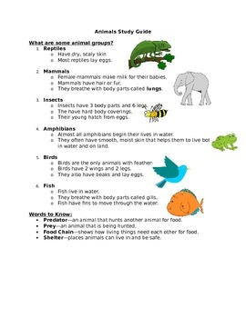 Animals Study Guide