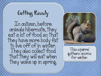 Animals That Hibernate: Interactive E-Book for the Smartboard