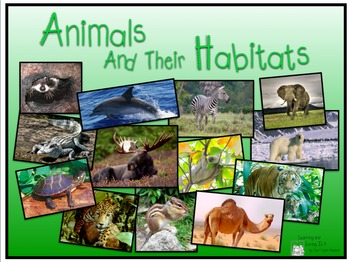 Image result for animals in their habitats