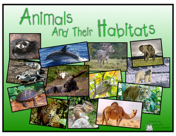 Animals Amp Their Habitats Pdf Version Of Keynote