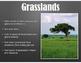 Animals & Their Habitats, PDF version of Keynote Presentat