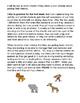 Animals Theme Contest