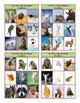Animals Tic-Tac-Toe or Bingo