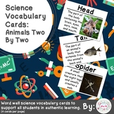 Animals Two by Two Science Vocabulary Cards