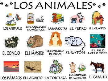 Animals Vocabulary Activities & Games Unit in Spanish (Los animales)