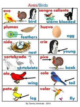 Animals Vocabulary Bilingual