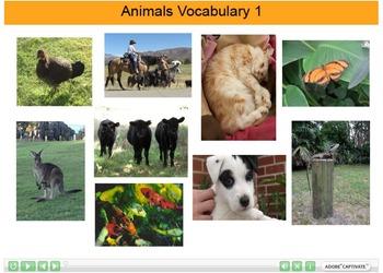 Animals Vocabulary Interactive Resource 1