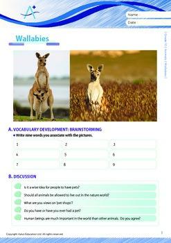 Animals - Wallabies - Grade 10