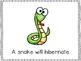 Animals Will Hibernate Emergent Reader