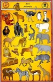 Animal Clip art - Zoo Clip Art Set by Charlotte's Clips