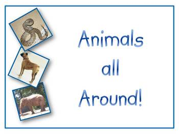 Animals all Around!