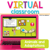 Animals and Adaptations Science