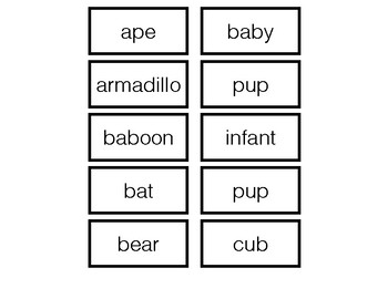 Animals and Baby Names
