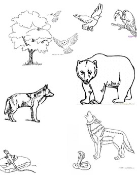 Animals and Colors Practice, Expresate Chapter 9 Spanish 2
