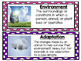 Animals and Ecosystems Vocabulary Cards 4.L.1
