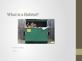 Animals and Habitats Lessons 1-5
