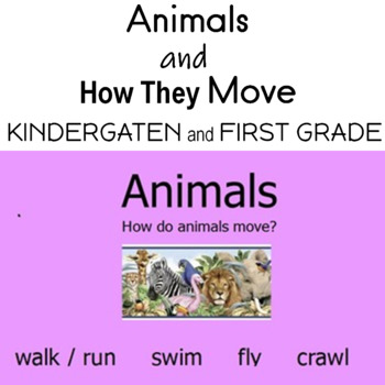 Animals and How They Move Flipchart