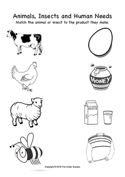 Animals and Human Needs (Match and Colour Worksheet)