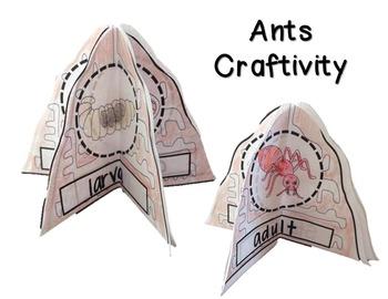Animals and Insects Bundle -  Life Cycles, Habitats, Adaptations