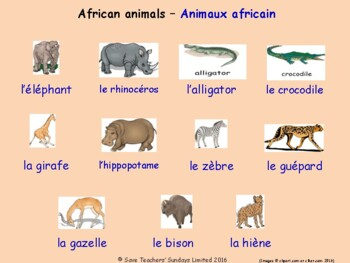 Animals and Nature in French Posters / Slides