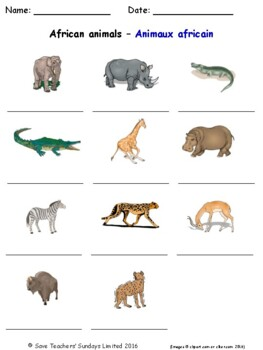 Animals and Nature in French Worksheets