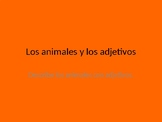 Animals and Personality Adjectives PPT in Spanish
