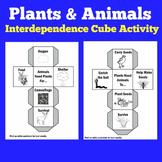 PLANTS AND ANIMALS ACTIVITY