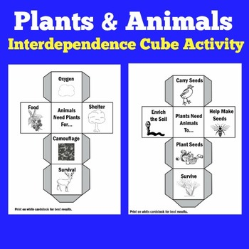 Plants and Animals Unit Activity | Plants and Animals Interdependency