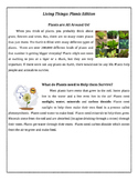 Animals and Plants Comparing and Contrasting