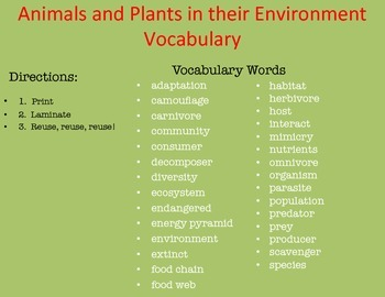Food Chains and Webs - Animals and Plants in their Environment Vocabulary Words