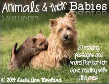 Animals and Their Babies: Close Reading and More!
