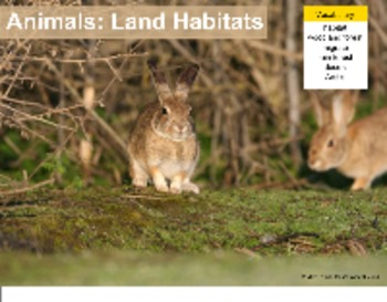 Animals and Their Land Habitats - A Second Grade SmartBoard Review