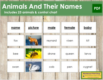 Animals and Their Names