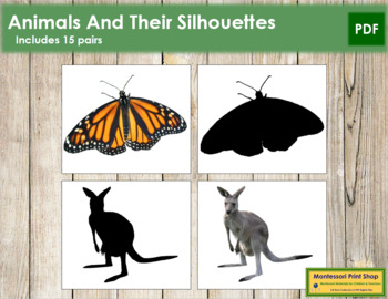 Animals and Their Silhouettes