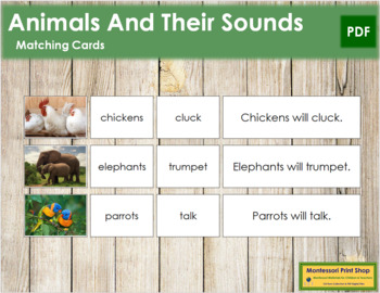 Animals and Their Sounds (B/W)