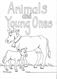 Animals and Young Ones Physical Resemblances