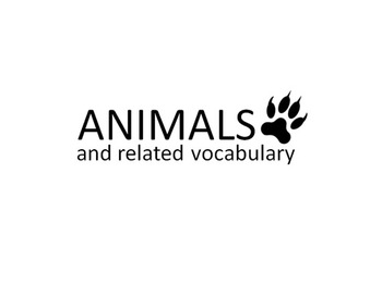 Animals and related vocabulary