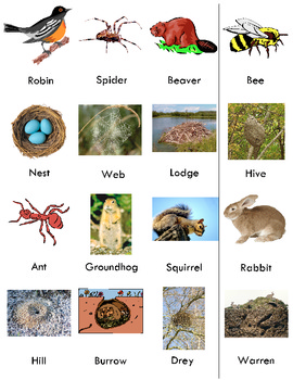 Animals and the Homes They Make Matching Game