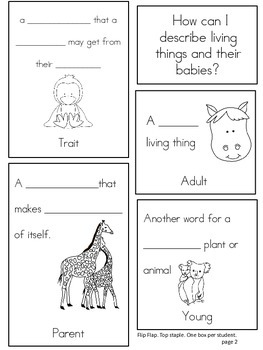 Animals and their Babies: A Primary Lapbook