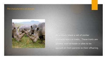 Animals and their Characteristics Powerpoint