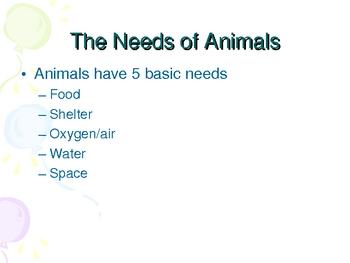 Animals and their Habitats