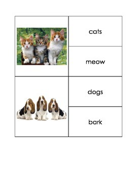 Animals and their Sounds
