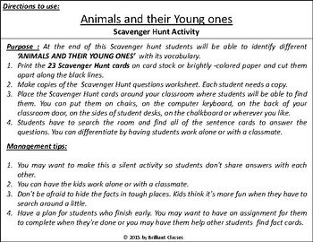 Animals and their Young ones Scavenger Hunt Activity